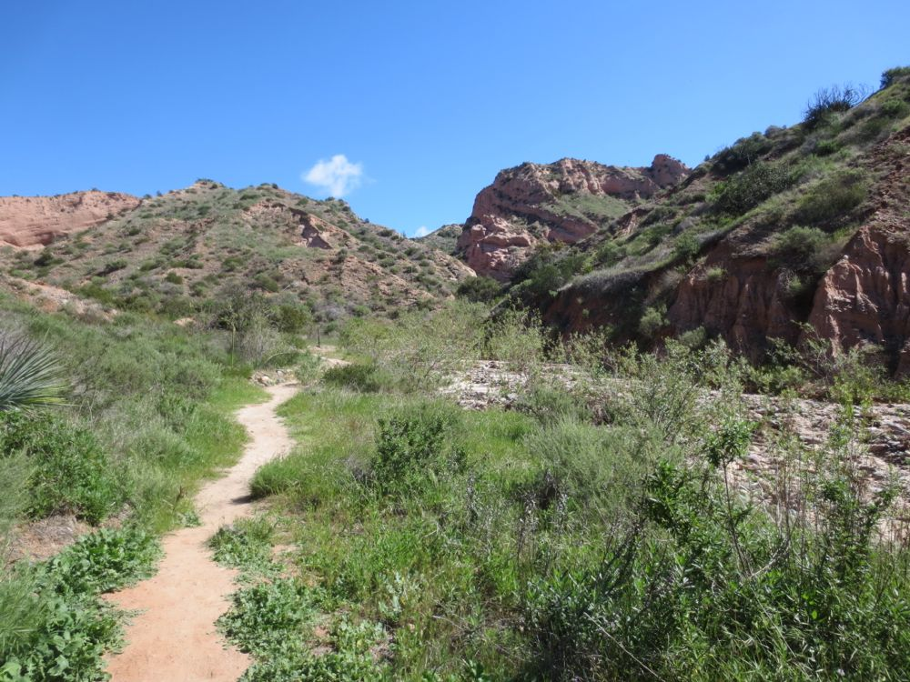 Whiting Ranch Red Rock Canyon Hike IMG_4630